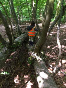 Child standing on log at Forest School
