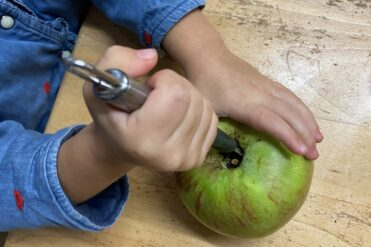 using apple corer to core apple