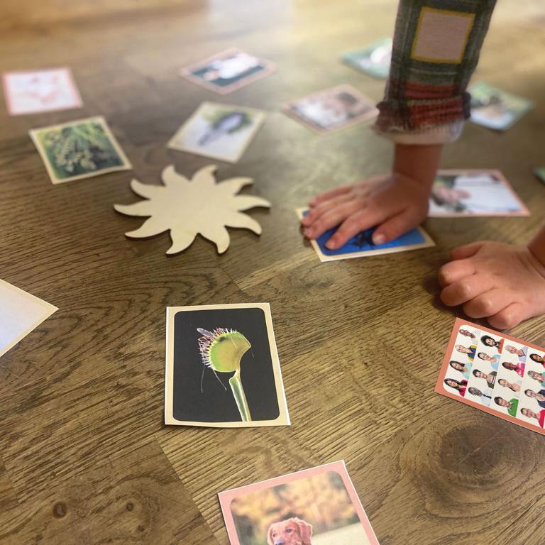 Montessori sun activity