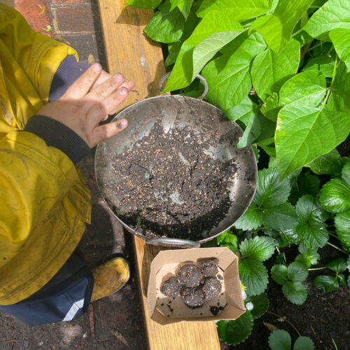 mud bombs for bees