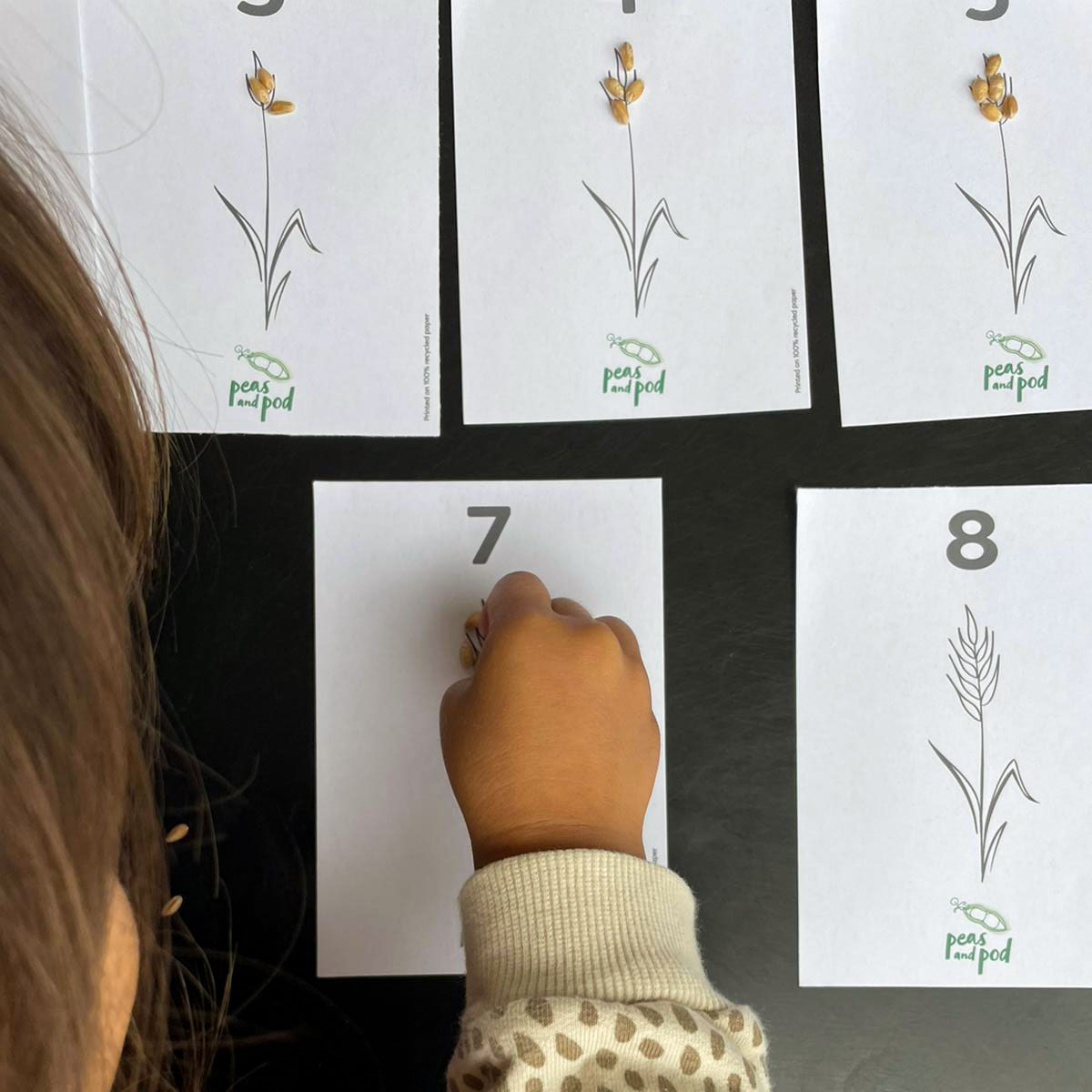 wheat counting cards